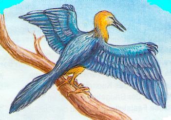Ur-Vogel